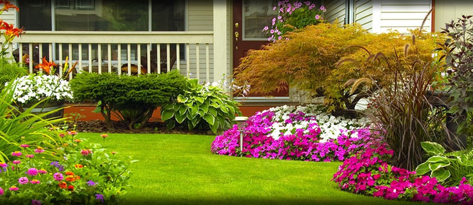 Land Scaping Services in Dubai
