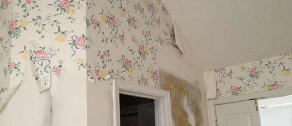 Wallpaper Removing in Dubai